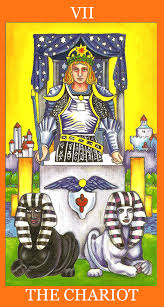 tarot reading for The Chariot #7
